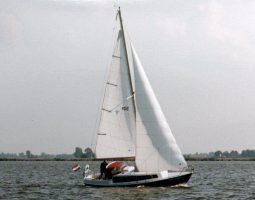 Merenpoort 880